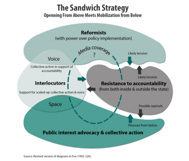 sandwichstrategyfox